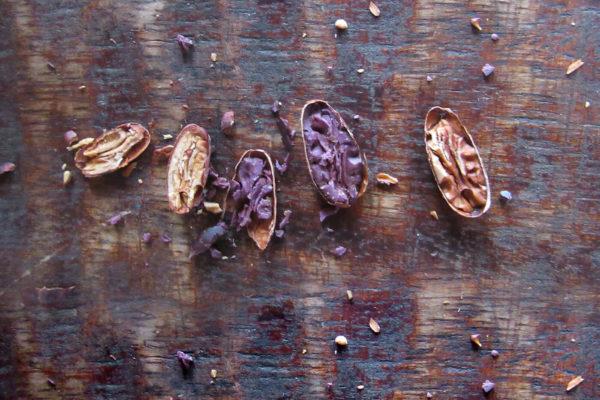 antioquia-cacao-apoyo-sectores2