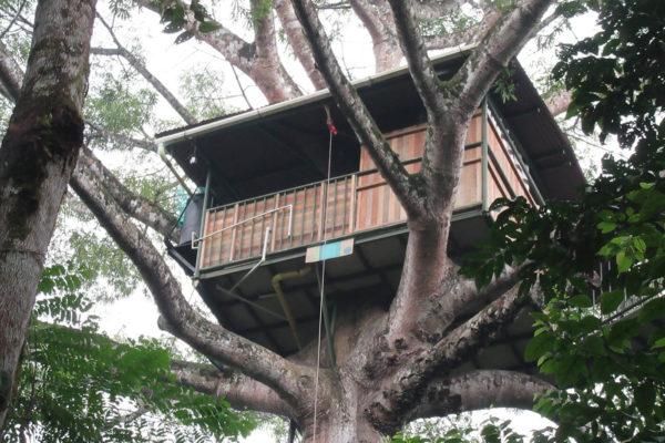 apoyo-sectores-turismo-putumayo-7