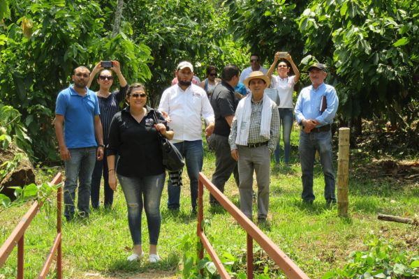 arauca-cacao-apoyo-sectores17
