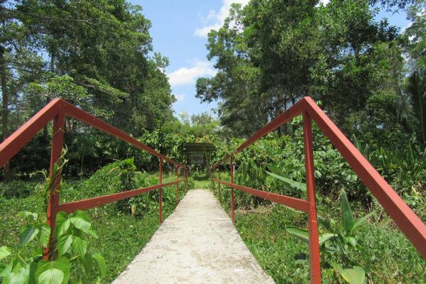 arauca-cacao-apoyo-sectores18