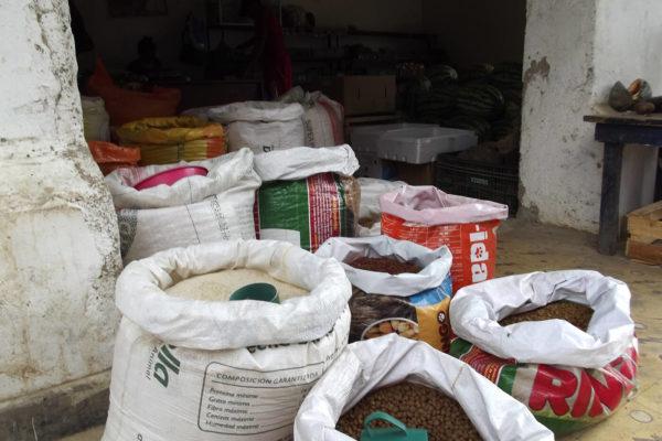 bolivar-cacao-apoyo-sectores-6