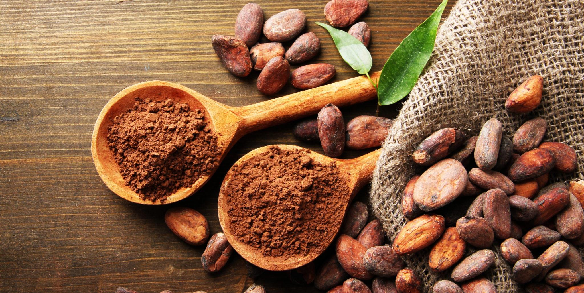 Esto es lo que debe saber sobre Cacaos Especiales