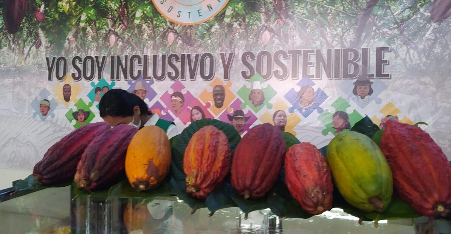 Suiza le apuesta al cacao sostenible huilense